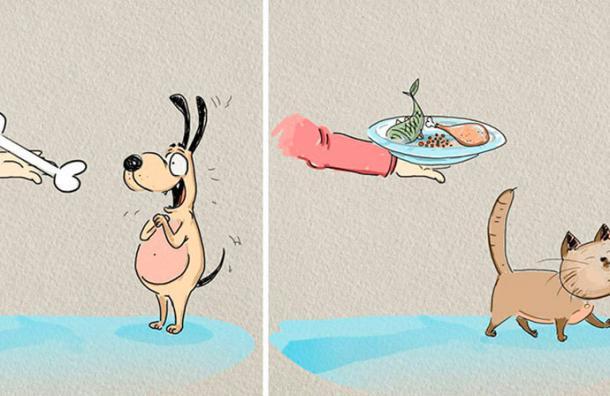 Este artista demostró en dibujos las 6 diferencias que hay entre los perros y los gatos