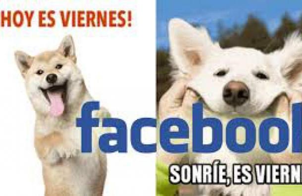 Nueva función de Facebook: ¡Escoge un meme!