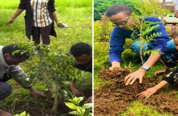 Etiopía planta más de 350 millones de árboles en 12 horas