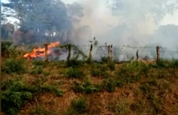 Incendio consume cuatro manzanas de maleza en Rivas