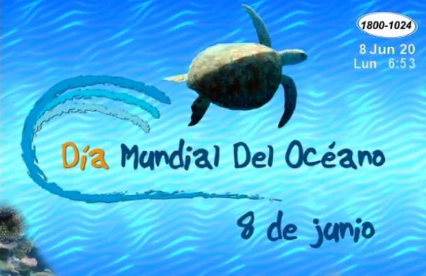 Hoy se conmemora el Día Mundial de los Océanos